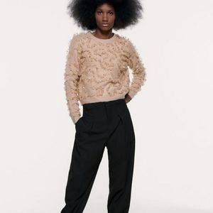 Zara sweater with glittery ruffle trims